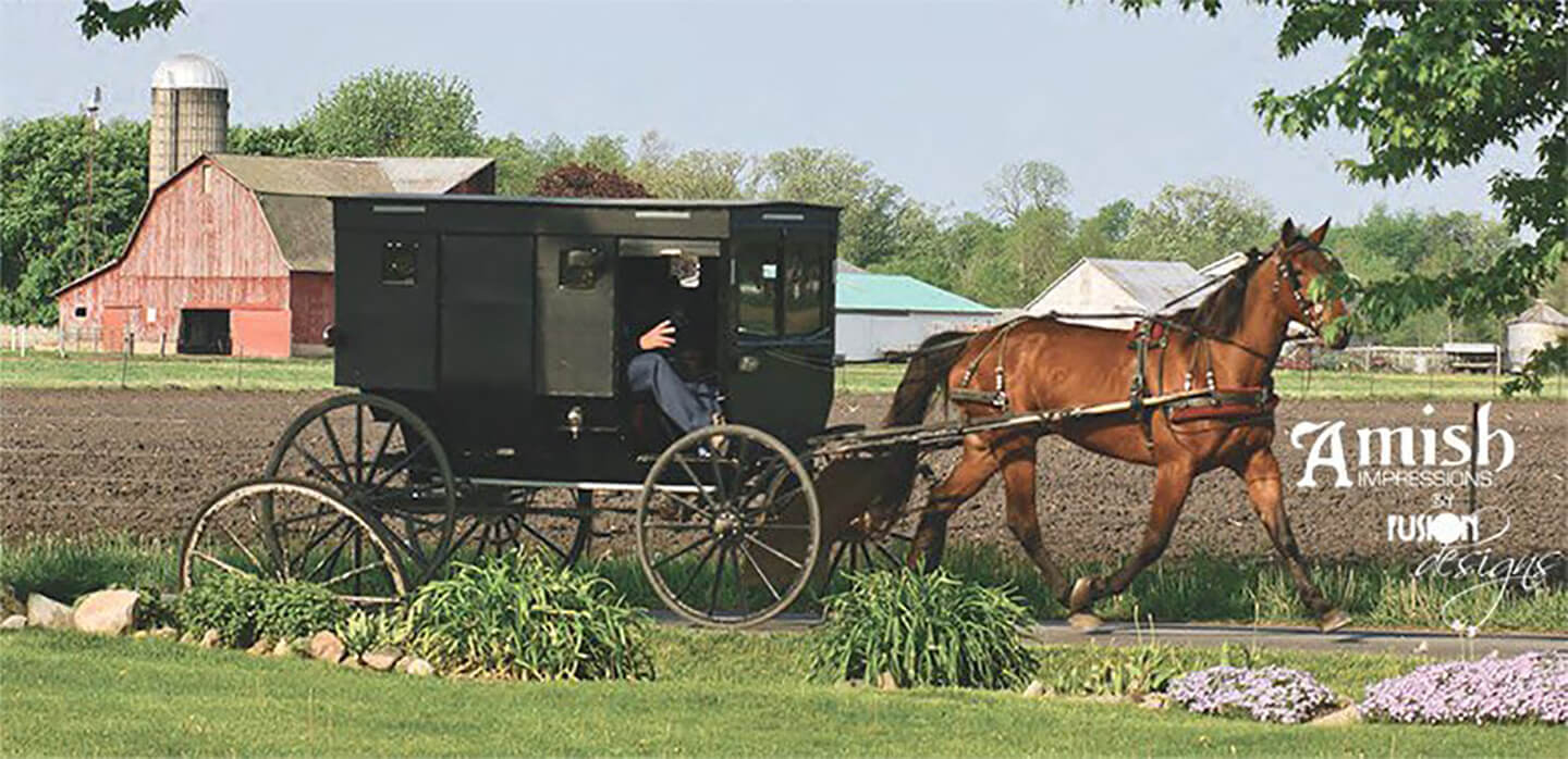 Amish Impressions by Fusion Design